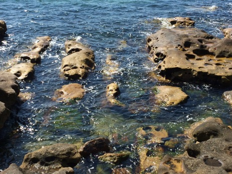 sandstone-rocks-on-the-harbour-foreshore