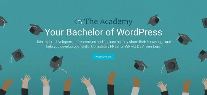 I have a dream…er, a tech learning goal = Bachelor orWordPress