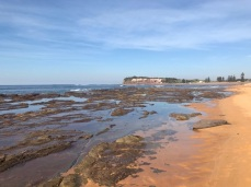 Tuesday 21 May walk to Long Reef 02