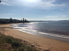 Tuesday 21 May walk to Long Reef 03