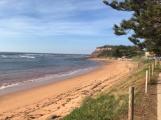 Tuesday 21 May walk to Long Reef 04