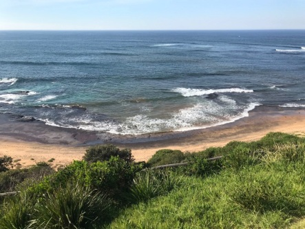 Tuesday 21 May walk to Long Reef 07