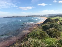 Tuesday 21 May walk to Long Reef 12