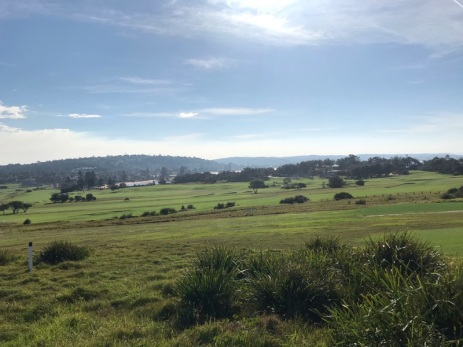 Tuesday 21 May walk to Long Reef 13