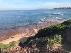 Tuesday 21 May walk to Long Reef 14
