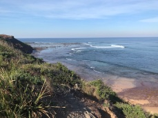 Tuesday 21 May walk to Long Reef 15